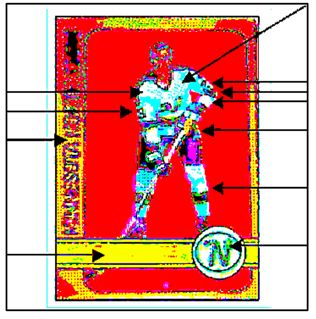 hockey card front